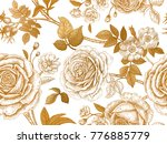 garden roses and briar. gold... | Shutterstock .eps vector #776885779