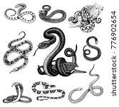 set viper snake. serpent cobra... | Shutterstock .eps vector #776902654