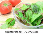 mesclun greens and tomato | Shutterstock . vector #77692888