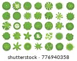 various green trees  bushes and ... | Shutterstock . vector #776940358