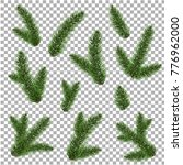 green fur tree branch  vector... | Shutterstock .eps vector #776962000
