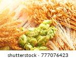 green hops  malt  ears of... | Shutterstock . vector #777076423