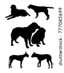 dogs silhouette set different... | Shutterstock .eps vector #777085699