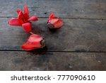 bombax ceiba red flower | Shutterstock . vector #777090610