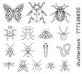 different kinds of insects... | Shutterstock .eps vector #777138850