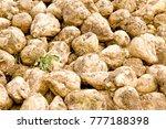 shugar beets on a field | Shutterstock . vector #777188398