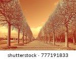 sepia. landscape in the autumn... | Shutterstock . vector #777191833