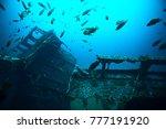 shipwreck  diving on a sunken... | Shutterstock . vector #777191920