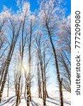 winter in the arctic. christmas.... | Shutterstock . vector #777209080