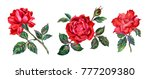 Stock photo set of red roses watercolor illustration on white background isolated with clipping path 777209380