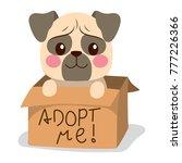 cute little pug dog inside... | Shutterstock .eps vector #777226366