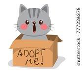 cute little cat on a cardboard... | Shutterstock .eps vector #777226378