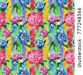 wildflower pink peony flower... | Shutterstock . vector #777248566