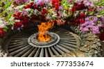 memorial to memory of unknown... | Shutterstock . vector #777353674