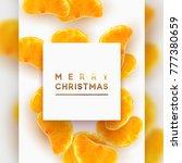 merry christmas card. fruit... | Shutterstock . vector #777380659