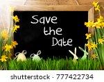sunny narcissus  easter egg ...   Shutterstock . vector #777422734