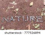 nature written with eucalyptus... | Shutterstock . vector #777526894