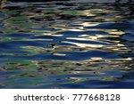 reflection in water   Shutterstock . vector #777668128