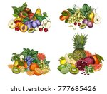 four bunches of garden fruits....   Shutterstock .eps vector #777685426