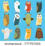 Stock vector owls vector cartoon cute bird set owlet character kids animal baby art for children owlish 777707203