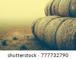 hay for food | Shutterstock . vector #777732790