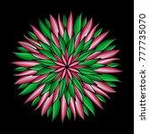 mandala. colorful round... | Shutterstock . vector #777735070