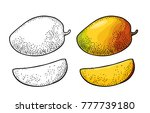 whole and slice mango. vector...   Shutterstock .eps vector #777739180