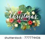 christmas on the summer beach... | Shutterstock . vector #777774436