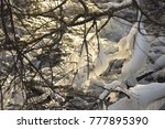 spring. ice is melting. | Shutterstock . vector #777895390