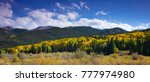 yellow aspens dominate the... | Shutterstock . vector #777974980