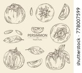 collection of persimmon fruit... | Shutterstock .eps vector #778007599