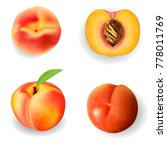 set of realistic ripe peach on... | Shutterstock .eps vector #778011769