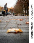 Small photo of Closeup of a golden leaf on a sidewalk, with in the blurred background a person cycling against the wind.