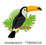 toco toucan icon is a flat ... | Shutterstock .eps vector #778056214