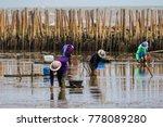 thai fishery villager in... | Shutterstock . vector #778089280