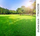 sun tree lawn   Shutterstock . vector #778162258