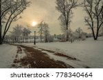 winter landscape. a concrete pedestrian road with trees and a street lamp near the river