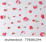 rose petals  anther and leaf.... | Shutterstock . vector #778381294