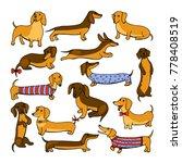 set of dog dachshund... | Shutterstock . vector #778408519