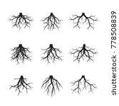 Set Of Black Roots. Vector...