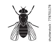 fly icon. vector realistic fly.  | Shutterstock .eps vector #778701178