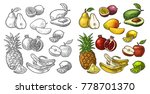 set fruits. isolated on the... | Shutterstock .eps vector #778701370