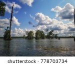 swamp tour. the swamps of the...   Shutterstock . vector #778703734