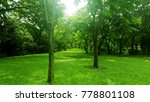 greenery forest in bangkok | Shutterstock . vector #778801108