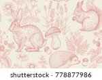 Stock vector forest animals and plants seamless pattern hare hedgehog squirrel berries strawberry flowers 778877986