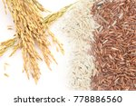 double exposure of paddy rice... | Shutterstock . vector #778886560