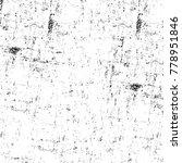 grunge black and white pattern. ...   Shutterstock . vector #778951846