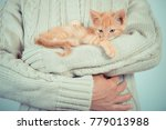Stock photo cute little red kitten is sitting on his hands kitten in the hands red haired kitten soft tone 779013988