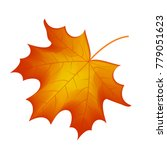 Autumn Maple Leaf Vector On A...