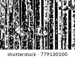 abstract background. monochrome ... | Shutterstock . vector #779130100